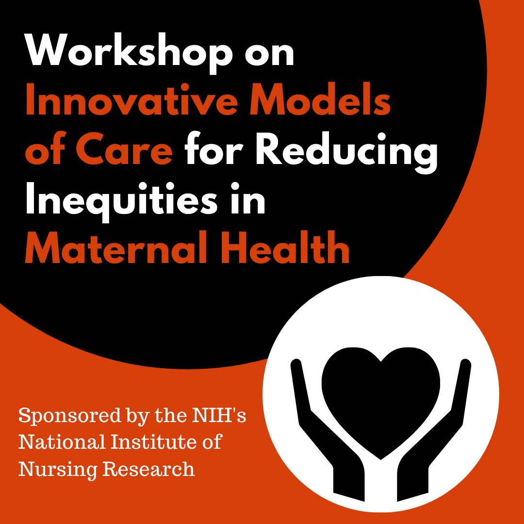 Workshop on Innovative Models of Care for Reducing Inequities in Maternal Health